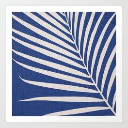 Indigo Palm - Vintage Botanical Art Print