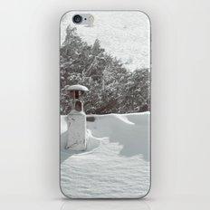 it's winter iPhone & iPod Skin