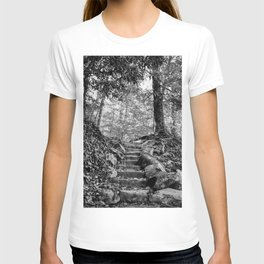 Rock Stairway Cades Cove Tennessee by Alli Gunter Photography T-shirt