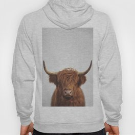 Highland Cow - Colorful Hoodie