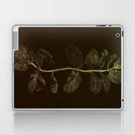 La Menthe Laptop & iPad Skin