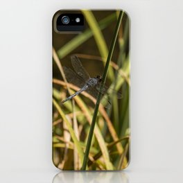 Dragonfly in the marsh iPhone Case