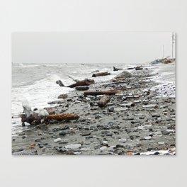 Driftwood Beach after the Storm Canvas Print