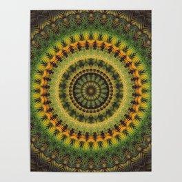 Mandala 237 Poster
