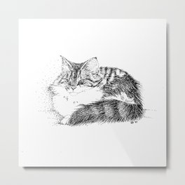 Maine Coon Cat - Pen and Ink Metal Print