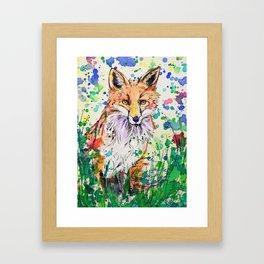 Red Tail Framed Art Print