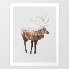 Arctic Deer Art Print