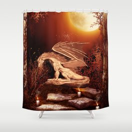 Wonderful dragon Shower Curtain