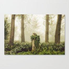 Magic stump Canvas Print