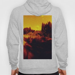 Eyes On Orange Horizons Hoody
