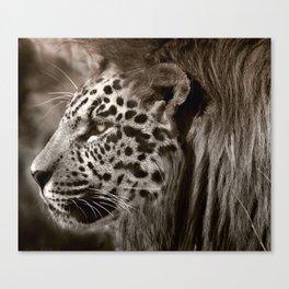 Lion Leopard Jaguar Cat Head Face Animal Fantasy Canvas Print