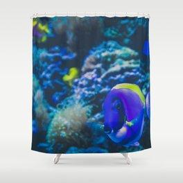 finding dori Shower Curtain