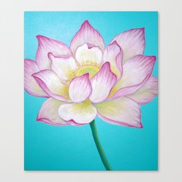 Sacred Lotus Flower Canvas Print
