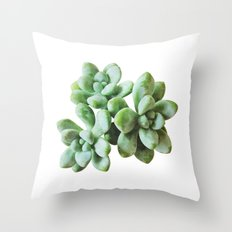 Succulent Blooms - Greenery Throw Pillow