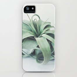 Air Plant III iPhone Case