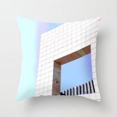 Framed Throw Pillow