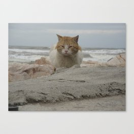 Still stormy... Canvas Print
