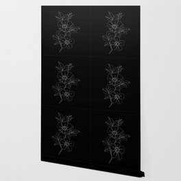 Botanical illustration one line drawing - Rose Black Wallpaper
