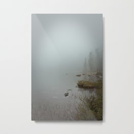 sleeping nature Metal Print