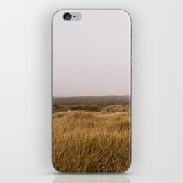 Oregon Sand Dunes iPhone Skin