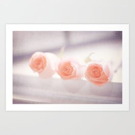 Roses by the letch Art Print
