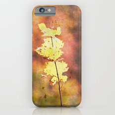 Seasonal Closeup - Autumn iPhone 6s Slim Case
