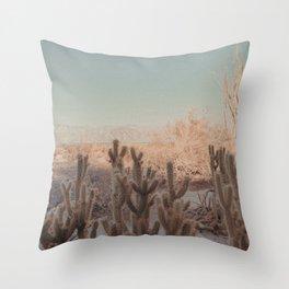 Anza Borrego Throw Pillow