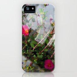 Summer Lovin' II iPhone Case