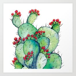 Blossoming Cacts Art Print