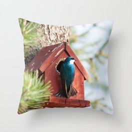 Blue Swallow Photography Print Throw Pillow