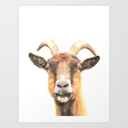 Goat Portrait Art Print