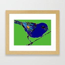 Madagascar Fody - Blue/Neon Green Pop Art Framed Art Print