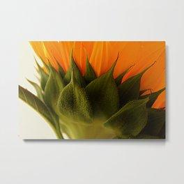 The Spectacular Sunflower Metal Print