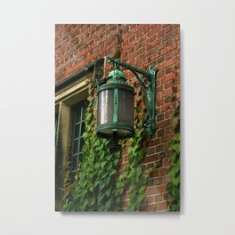 Light and Ivy Metal Print