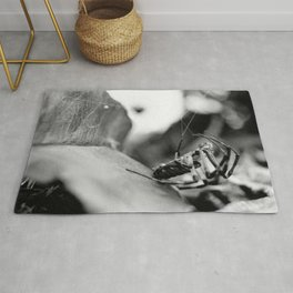 Spider and Leaf in Black and White Rug