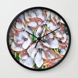Hydrangea Macro Rainbow Wall Clock