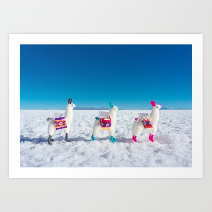 Llamas on the Bolivia Salt Flats Art Print