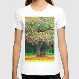 big tree with green yellow and red leaves T-shirt