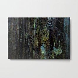 Colourful Wood Rot Metal Print