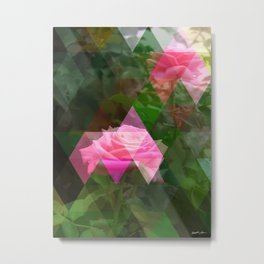 Pink Roses in Anzures 5 Art Triangles 1 Metal Print