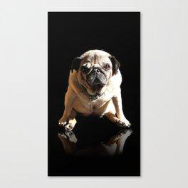 Pug Rock Superstar packshot Canvas Print