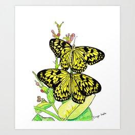 Black & Yellow Butterfly Art Print