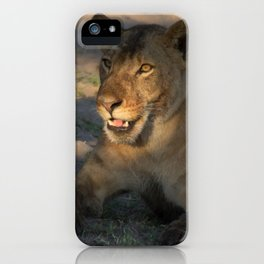 Resting Lioness iPhone Case