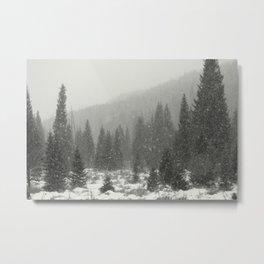 Mountain Snow Metal Print
