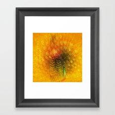 Peacock in Gold Framed Art Print