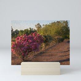 Pink rosebush by the fence Mini Art Print