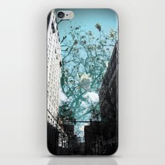 G R O W T H iPhone & iPod Skin