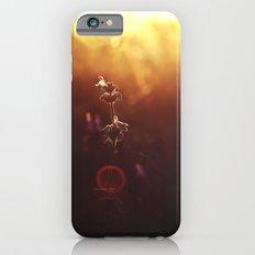 Phi // The Golden Ratio Slim Case iPhone 6s