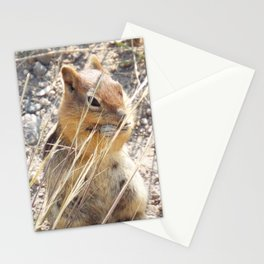 Ground Squirrel Stationery Cards
