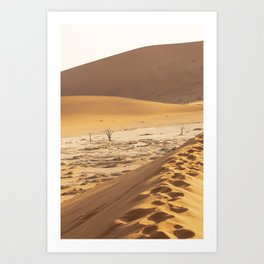 Deadvlei - (Sossusvlei) white clay pan in the Namib-Naukluft Park, Namibia Art Print